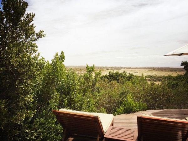 Garden Route Game Lodge Kaapstad Safari